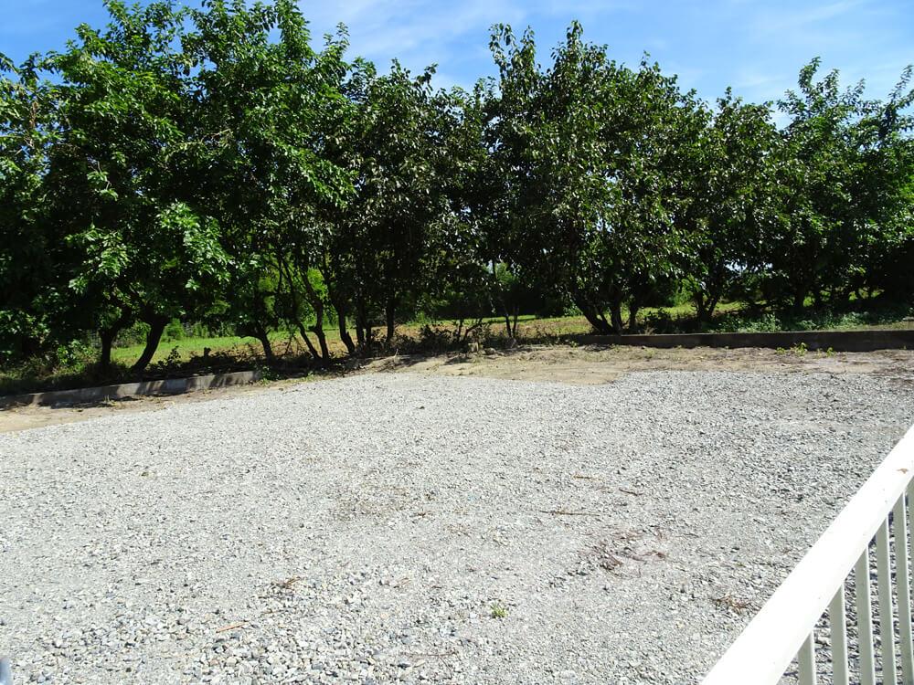 双葉郡浪江町土地調査&美味しいリンゴ