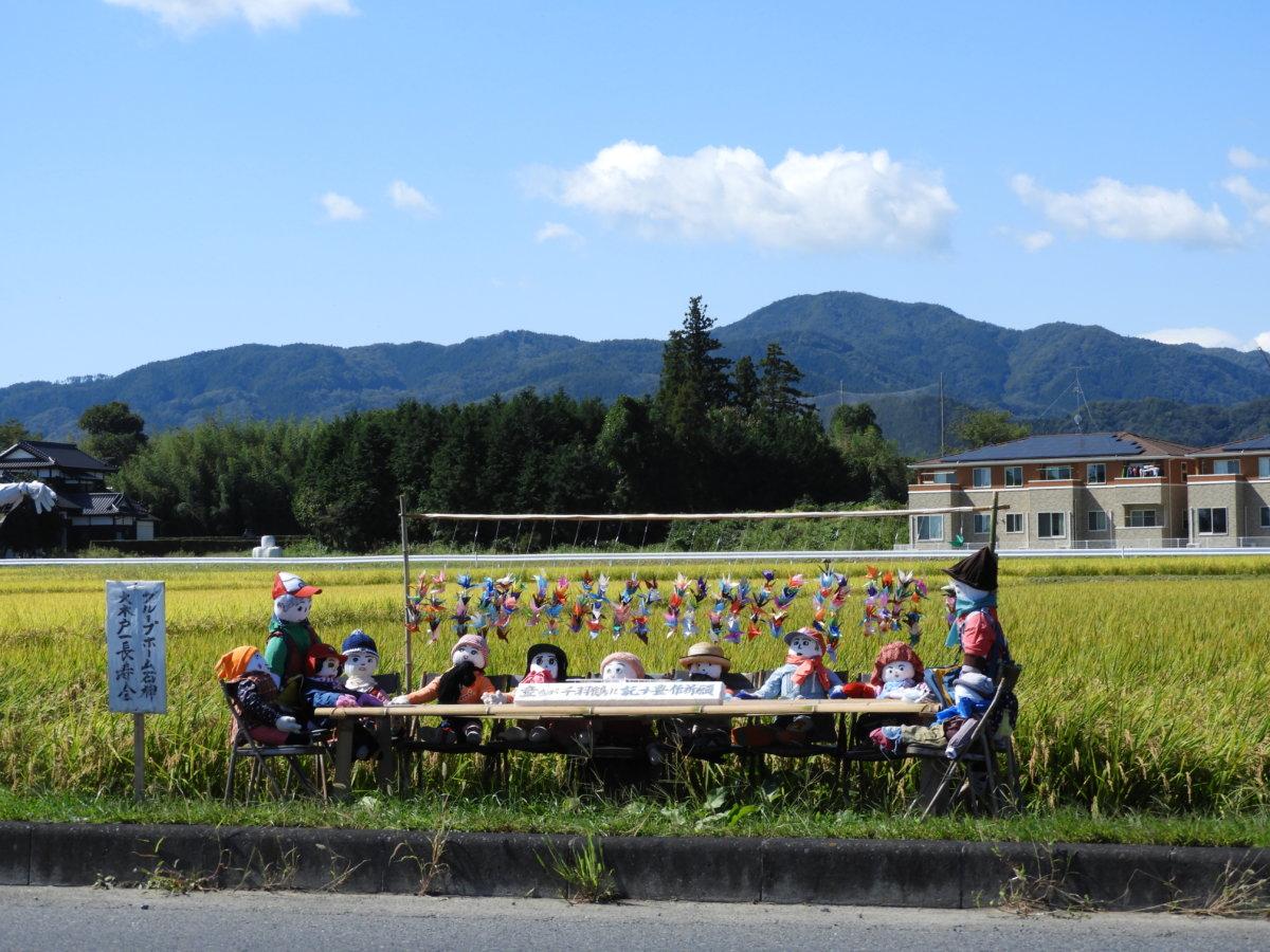 南相馬市原町区大木戸 黄金色の絨毯に集うカフェ(´艸`*)